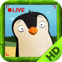 Pocket Zoo HD ™ with Live Animal Cams By Tiny Hearts Limited
