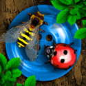 Bugs and Buttons By Little Bit Studio, LLC.