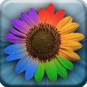 Web Albums HD for Picasa and Google+ By Pixite LLC