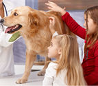 Pet Vaccination Clinic Smyrna, Spay and Neuter Marietta & Cumberland