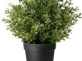 Artificial Herbs in Pots on Pinterest