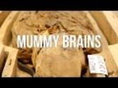 Mummy Brains