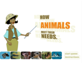How Animals Meet Their Needs