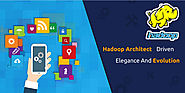 Hadoop Architect: Driven By Elegance And Evolution