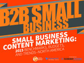 B2B Small Business Marketers: Increased Focus on Leads and Conversion [New Research]