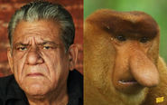 Om Puri and a Proboscis Monkey
