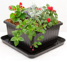 UrBin Grower Basic Container Kit