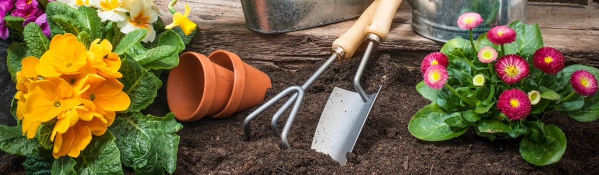 Headline for Top Ten Must-Have Items To Make Your Spring Garden Fun and Productive