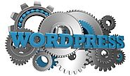 Why to choose Professional Wordpress Developers