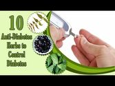 10 Anti-Diabetic Herbs to Control Diabetes or High Blood Sugar Levels