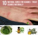 10 Effective Natural Cures for Scabies - Treat Scabies Naturally