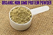 Top 10 Best Organic Non GMO Protein Powder Reviews