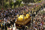 Palm Sunday in Elche, Alcante