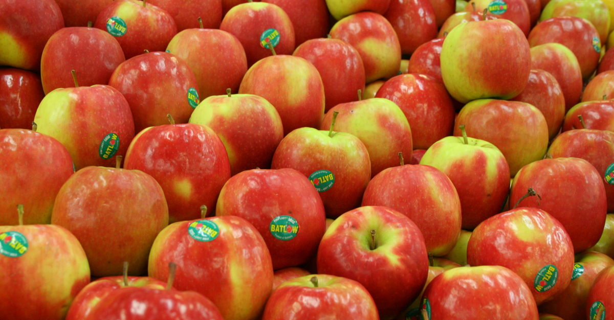 Headline for Delicious and Healthy Apple Recipes