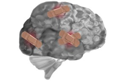 Making Movement Easier: Can Mindfulness Re-Open Pathways in the Brain?