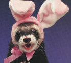 The World's Top 10 Obviously Fake Easter Bunnies