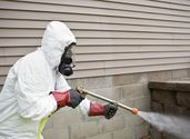 Recommendation To Decide On The Best Pest Control Solutions