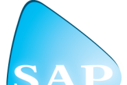 Save time and resources with eSalesData Customized SAP Users List