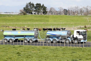 Fonterra CEO says supply contracts intact after food safety scare