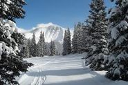 Winter Park Resort in Colorado