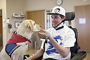 The healing power of pets: Research, experience speak to benefits of animal-assisted therapy