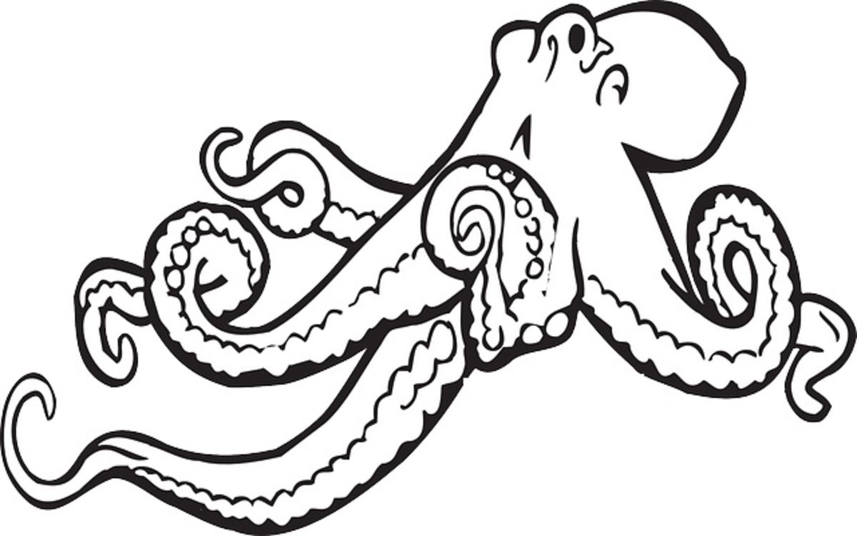 Headline for Best Black and White Octopus Shower Curtain Designs