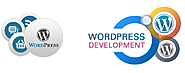 WordPress is most effective, inexpensive, robust and widely popular of all CMS solutions