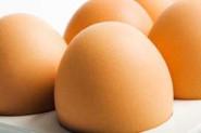 Food safety status of poultry meat and eggs in Iran