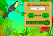 A Rainforest of Nouns