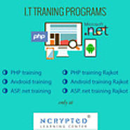 NCrypted Training - Bag The Web