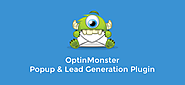 OptinMonster - Convert Visitors into Subscribers