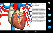 Visual Anatomy Free - Android Apps on Google Play
