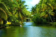 Kottayam Tourism - Get up close with beauty of nature