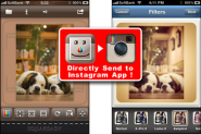 Essential Instagram Tools & Tips by...