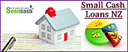 Provide Complete Detail on Small Cash Loans NZ