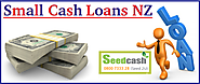 Small Cash Loans in NZ: Gain Its Instant Benefits