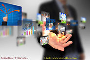 Aldiablos IT Services - Planning to Your Outsource Business
