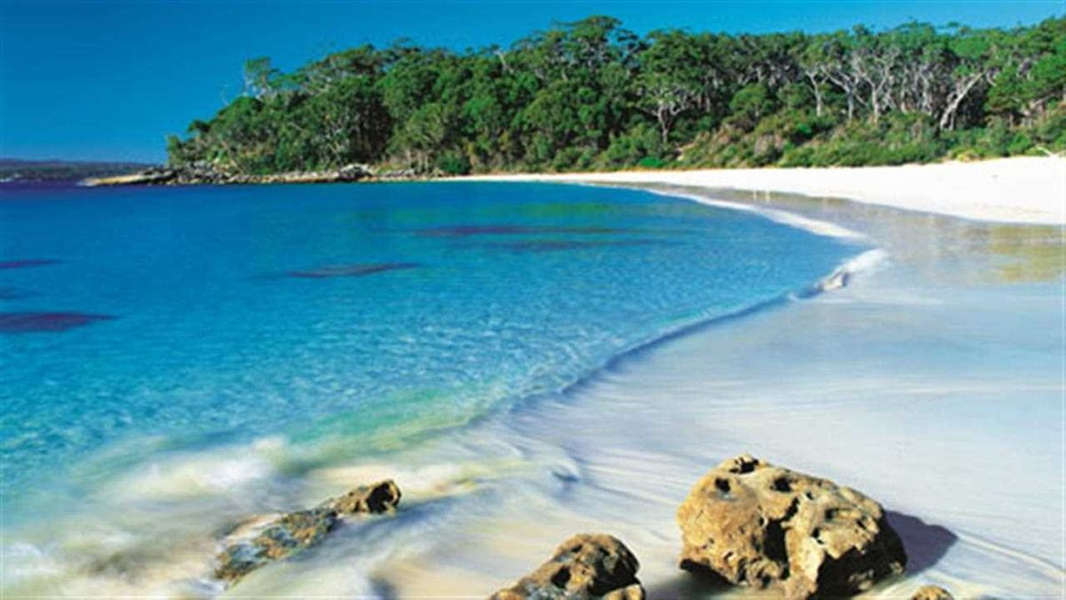 Headline for Top 5 activities to do in Jervis Bay - Best Five Things to Do on a Jervis Bay Holiday