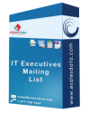 IT Executives Mailing List
