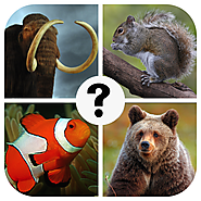 Guess the Animal Quiz - Free & Funny Word Puzzle Trivia Pics Science Spirit Zoo Game for Kids