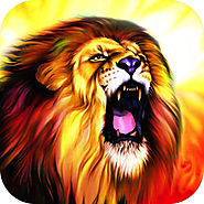 Punch the Wall - Play a true endless wild animal jungle adventure runner game