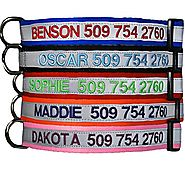 Embroidered Reflective Safety Personalized Dog Collar - Adjustable with Plastic Snap Closure