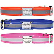 Reflective Waterproof Dog Collar. Comes With Custom Engraved Stainless Steel Slide-On Pet ID Tag. 100% Waterproof and...