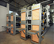 Egg Handling, Processing & Counting System, India