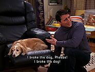 I broke the dog, Pheebs! I broke the dog!