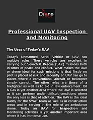 Professional UAV Inspection and Monitoring