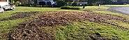 Stump Grinding & Removal Auckland