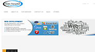 Website Development Companies in India - indosurplus