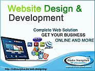 Hire Website Design Company in India - indosurplus