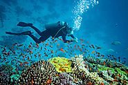 Snorkeling and Scuba Diving in Goa